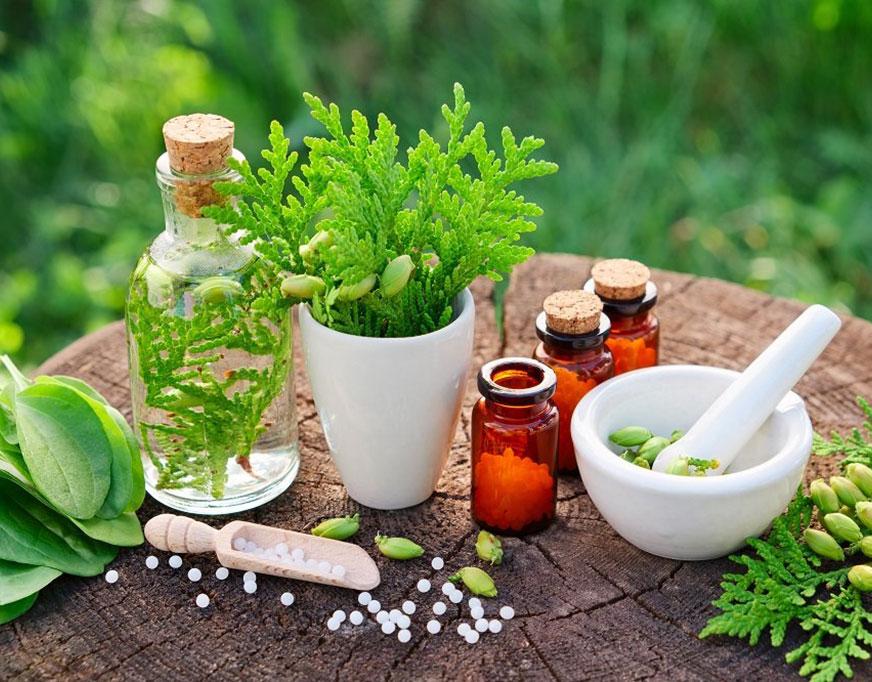 Benefits of herbal