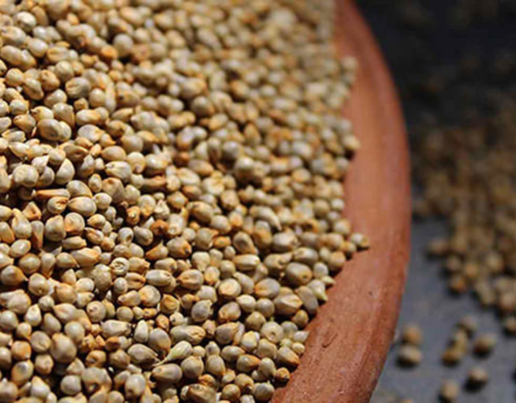 Benefits of pearl millet