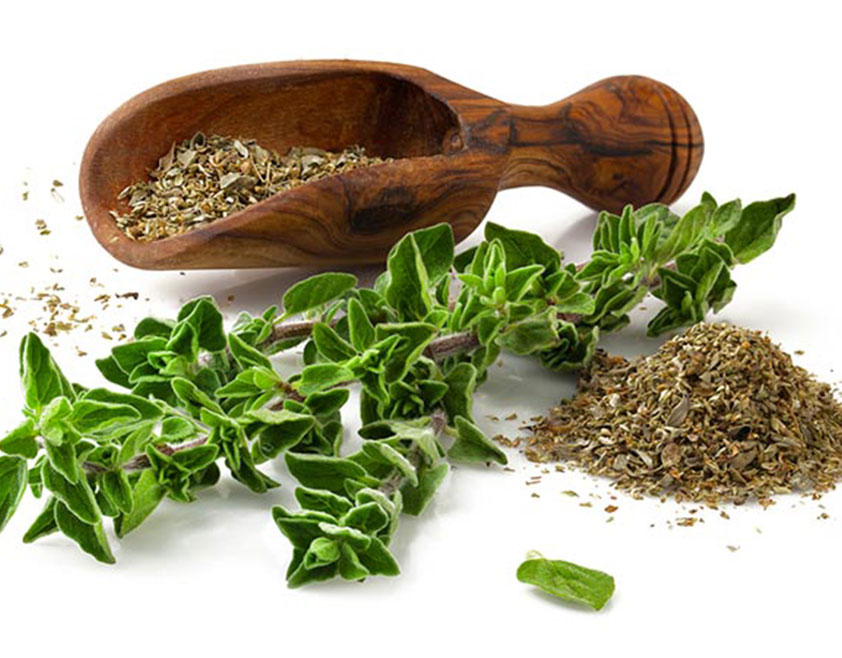 Herbs for sugar control