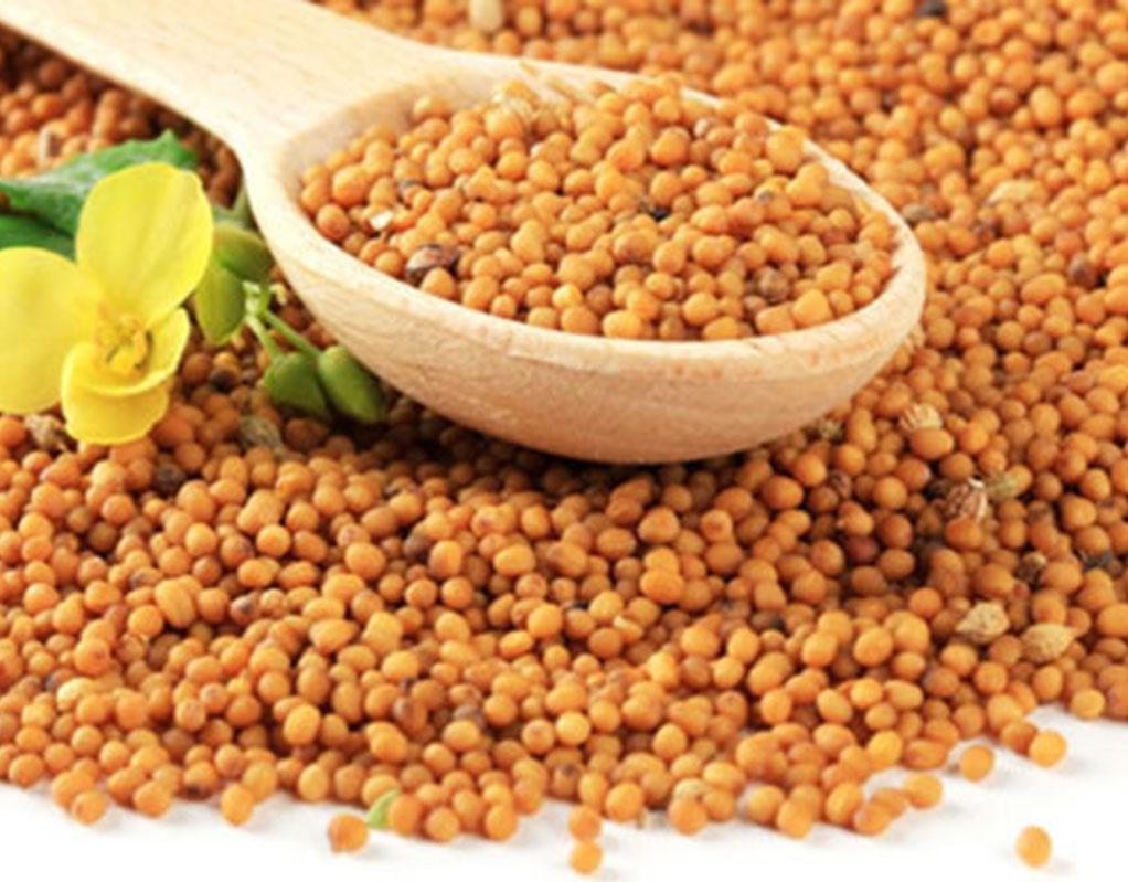 Benefits of mustard