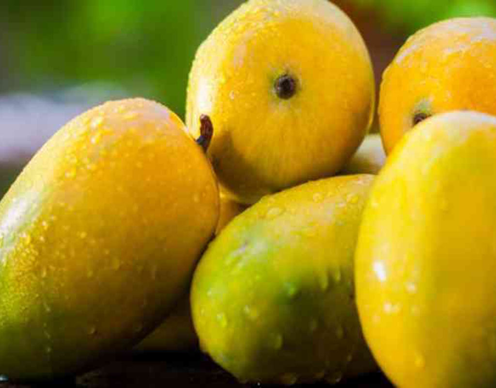 How to buy good mangoes