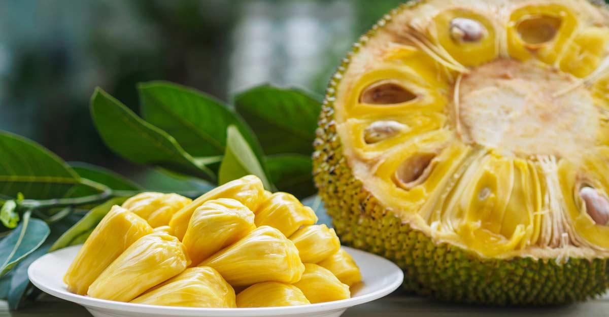 jackfruit benefits in tamil