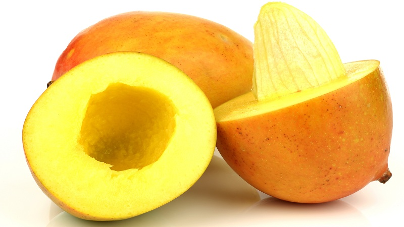 mango seed benefits in tamil