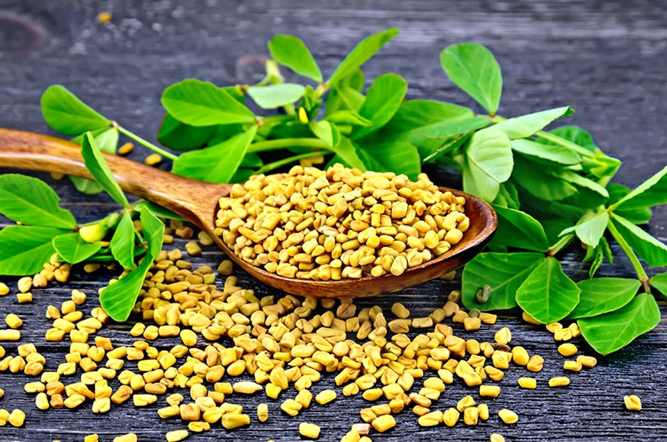 fenugreek for diabetes in tamil