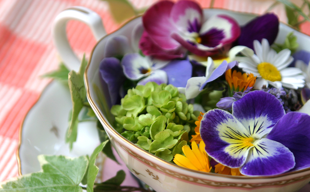 herbal flowers and their uses in tamil