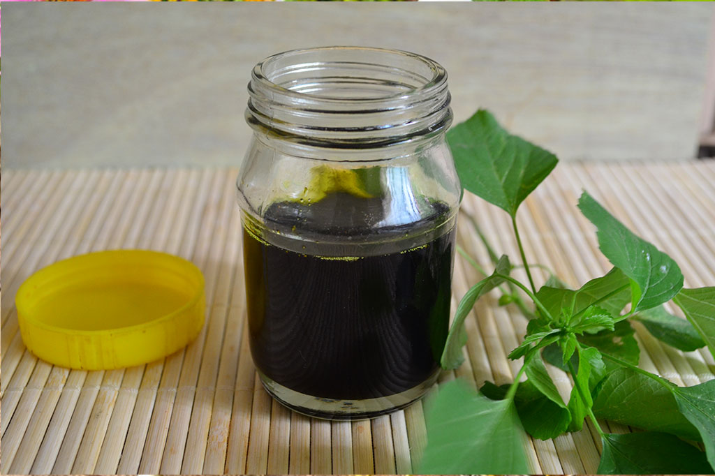 acalypha-indica -oil-benefits-in-tamil